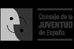 Consejo de la Juventud España