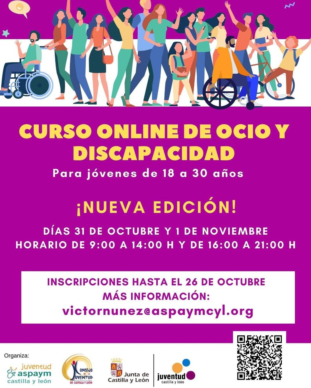 Curso Online de Ocio y Discapacidad